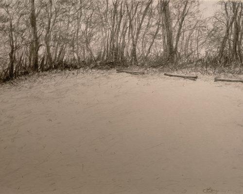 magdalena-bara-silence-karri-forest
