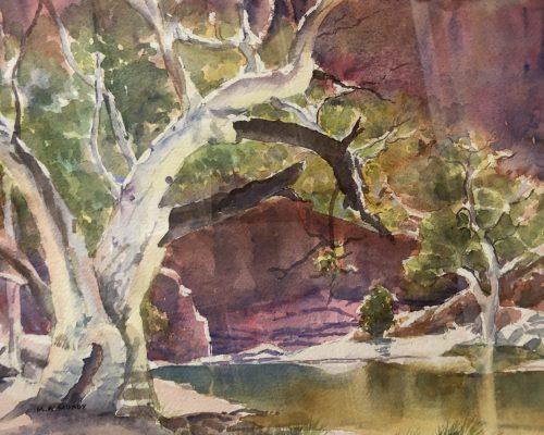 margaret-mundy-ormiston-gorge