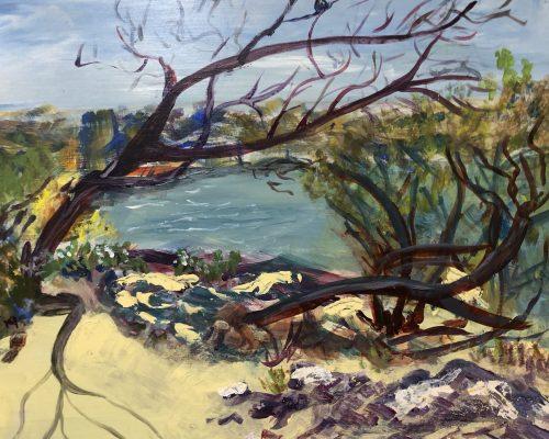 pat-tomlinson-swan-river